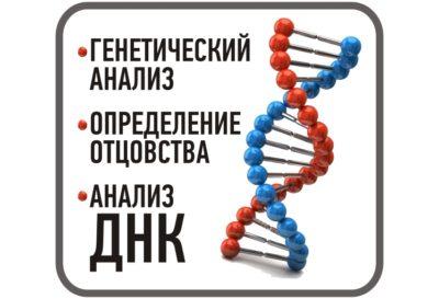 ДНК тест и установление отцовства